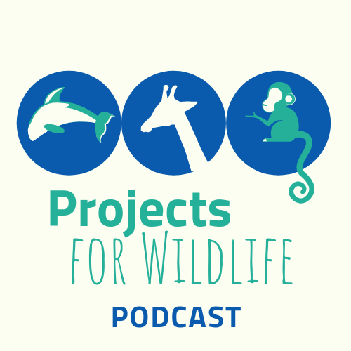 Projects For Wildlife