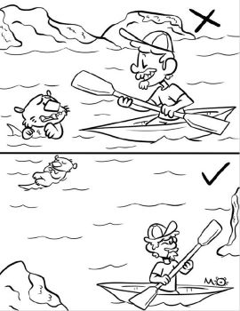 Murphy Otter Coloring Pages