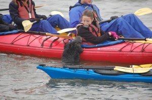 otter climb on kayak