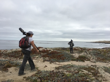 San Nicolas Island sea otter counters hits the trails with their Questar telescopes