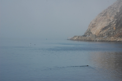 shooting morro rock view